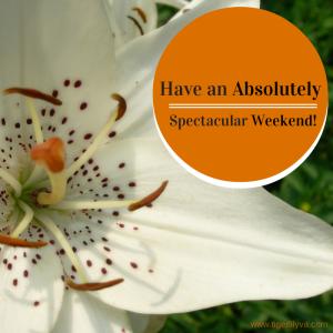 Spectacular Weekend