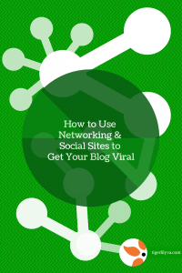 How to Use Networking & Social Sites to Get Your Blog Viral