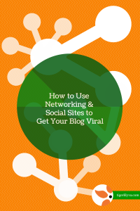 How to Use Networking & Social Sites to Get Your Blog Viral.2