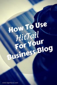 How To Use HitTail For Your Business